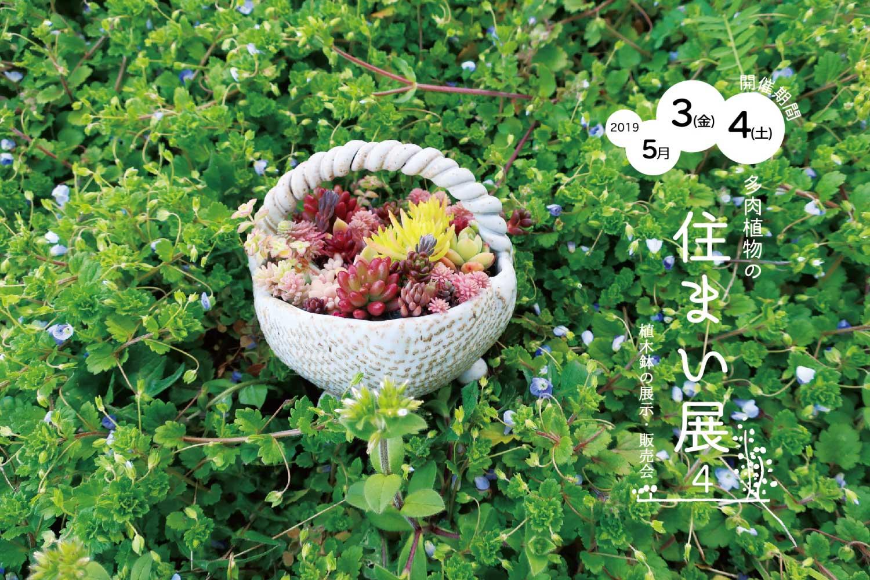 丸田窯 多肉植物の住まい展4